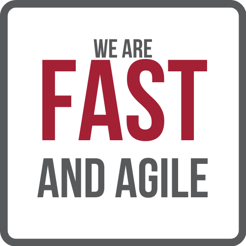We Are Fast and Agile